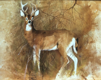 Buck Painting